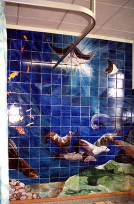 Gail Astbury sealions-bathroom Broomfield Hospital